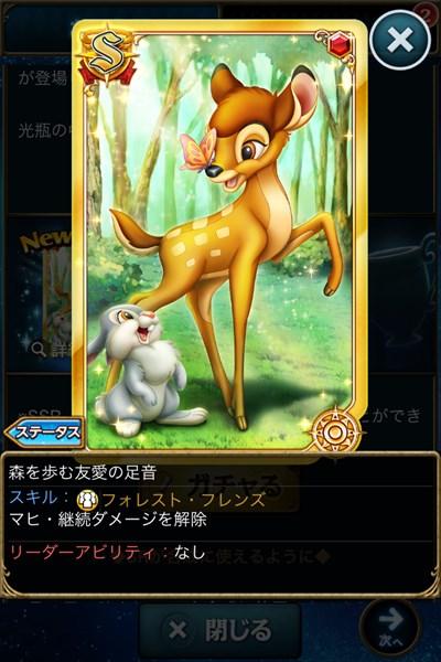 森を歩む友愛の足音2.JPG