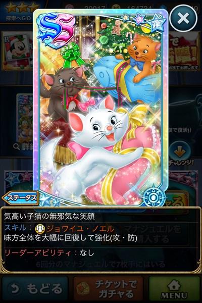 気高い子猫の無邪気な笑顔2.JPG